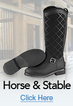 Horse & Stable